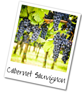 CabSauvGrapes