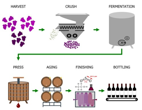 winemaking_500